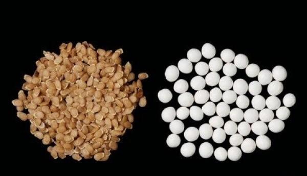 پلیت کردن بذر - آروین صنعت